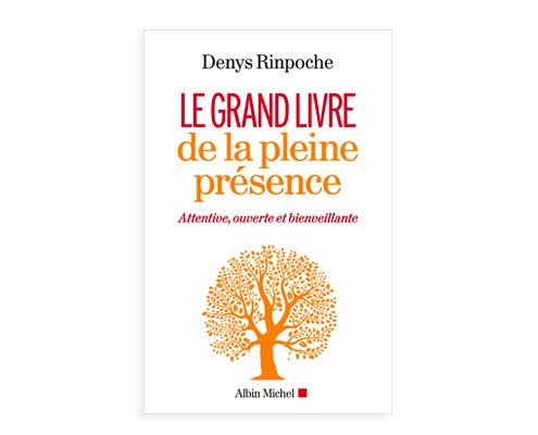 Le Grand Livre de la pleine présence Denys Rinpoché
